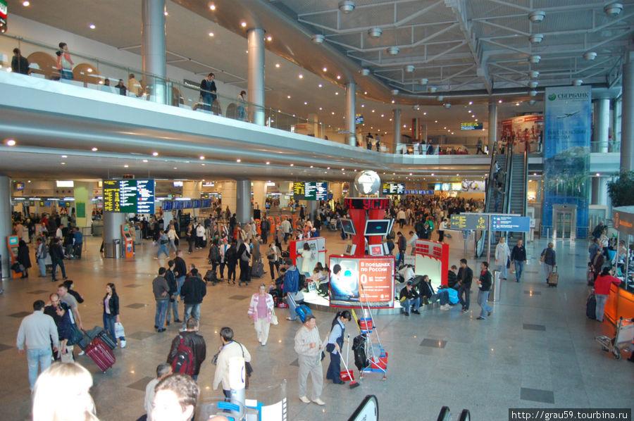 Людской муравейник в аэропорту Домодедово
