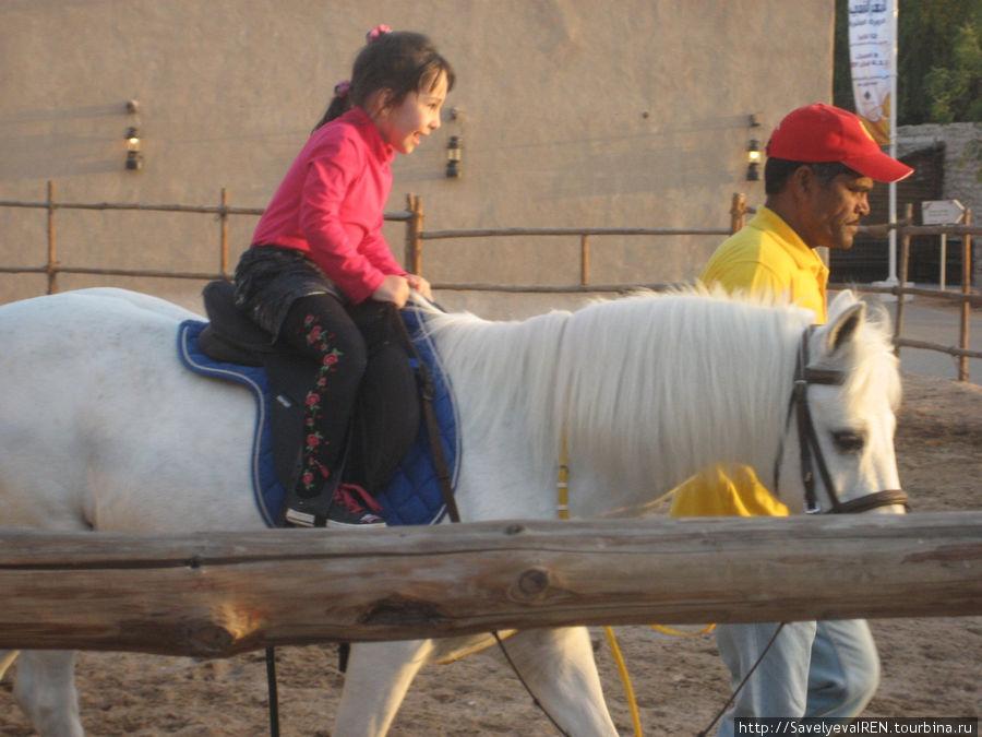 Детей катают на лошадях.