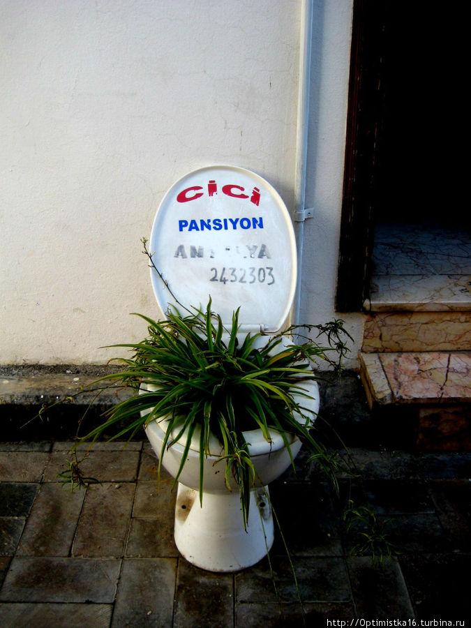 CiCi Pansiyon тоже может служить ориентиром. Он рядом.