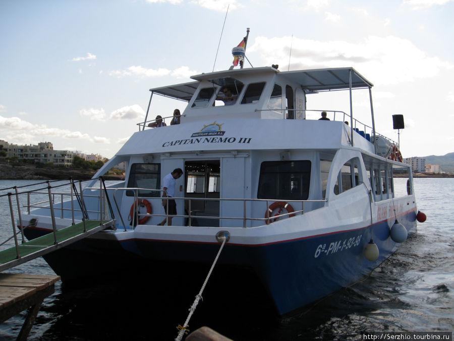 Вот такие кораблики подплывают к кафе-бару, привозя туристов в аквариум.