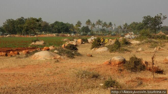 Центр Индии -кустарники, пальмы и камни