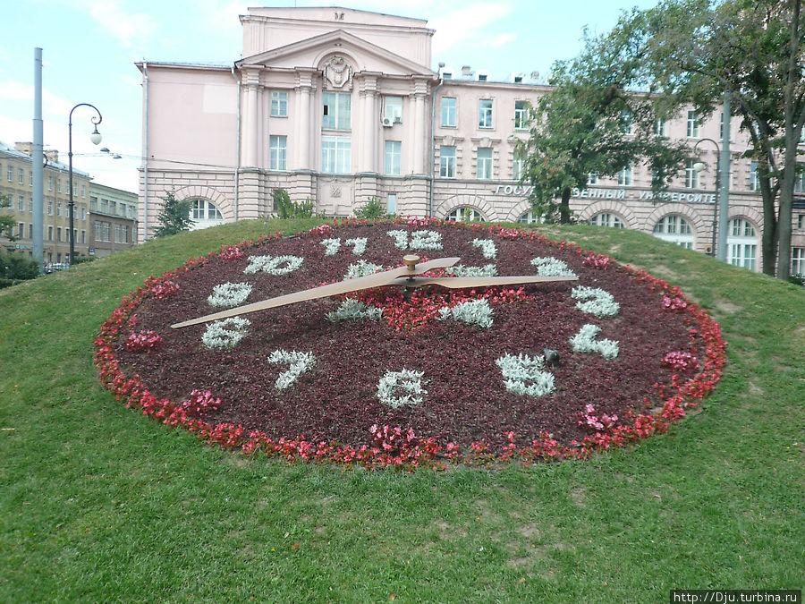 Цветочные часы Санкт-Петербурга