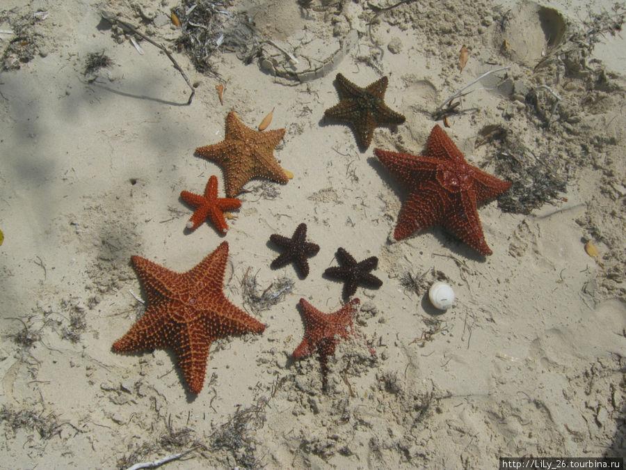 пляж Prohibida, остров Кайо-Коко