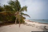Вода тёплая и почти чистая, но плавает много травы и водорослей. Берег — песчаный, а вот дно каменистое.