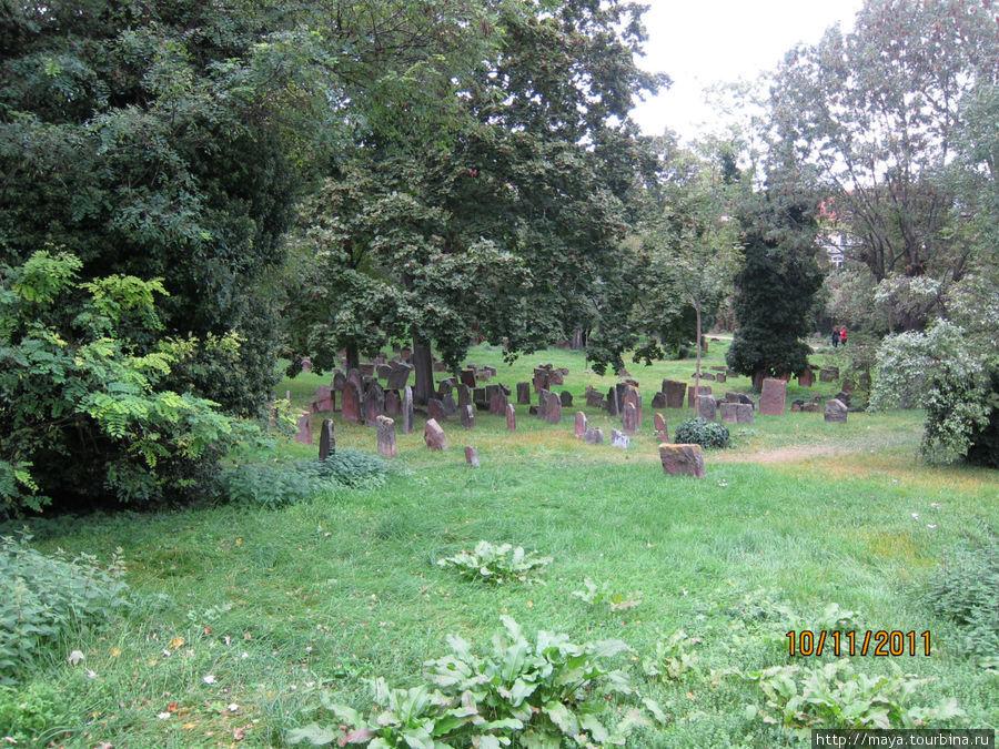 А вот и кладбище