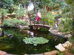 Парк отеля Grecian Bay.