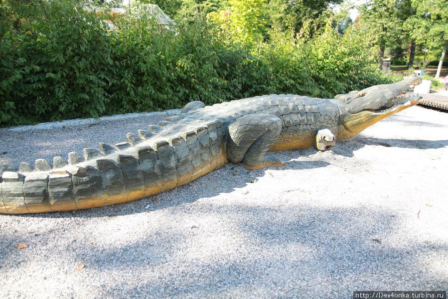 Самый не настоящий крокодил