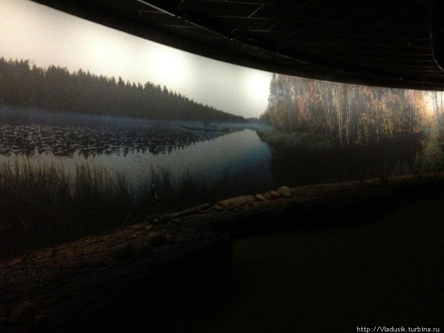 Комната тишины. Там темно, мягкий пол, лавочка и много-много разных природных звуков: ветер, птицы, насекомые, рыбы.