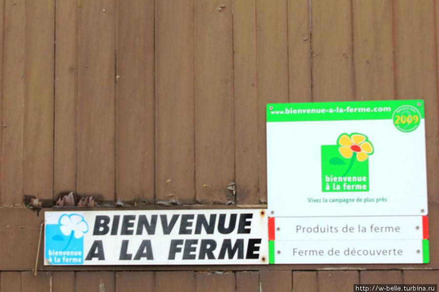 Магазин при ферме.
