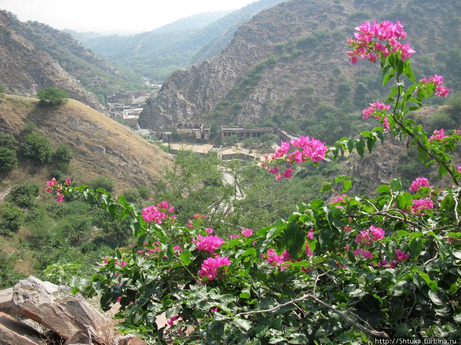 Джайпур, спуск к храму Солнца