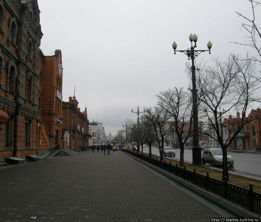 Улица Муравьёва-Амурского. Я вышла на автобусную остановку и поехала домой...