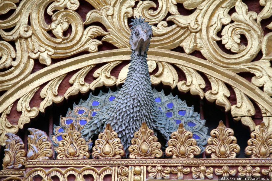 Мир без виз — 379. Город двух Будд Чианграй, Таиланд