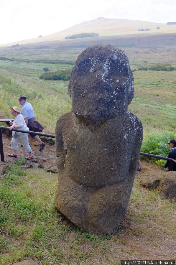 Первый моаи откопанный Туром Хейрдалом