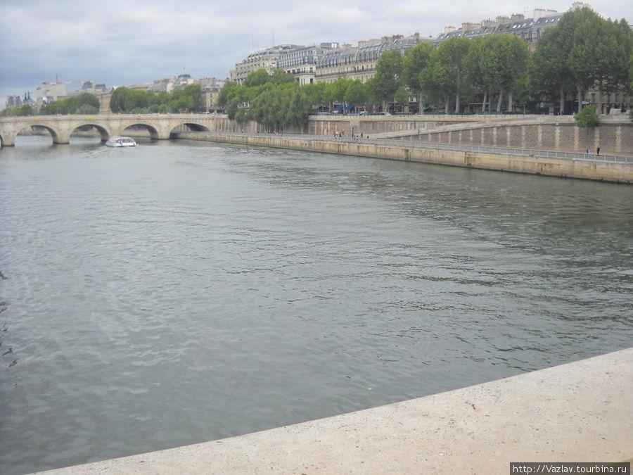 Панорама Сены с Нового моста