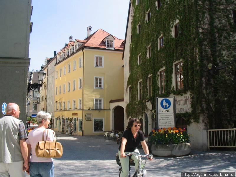 Плющ часто украшает дома в Германии