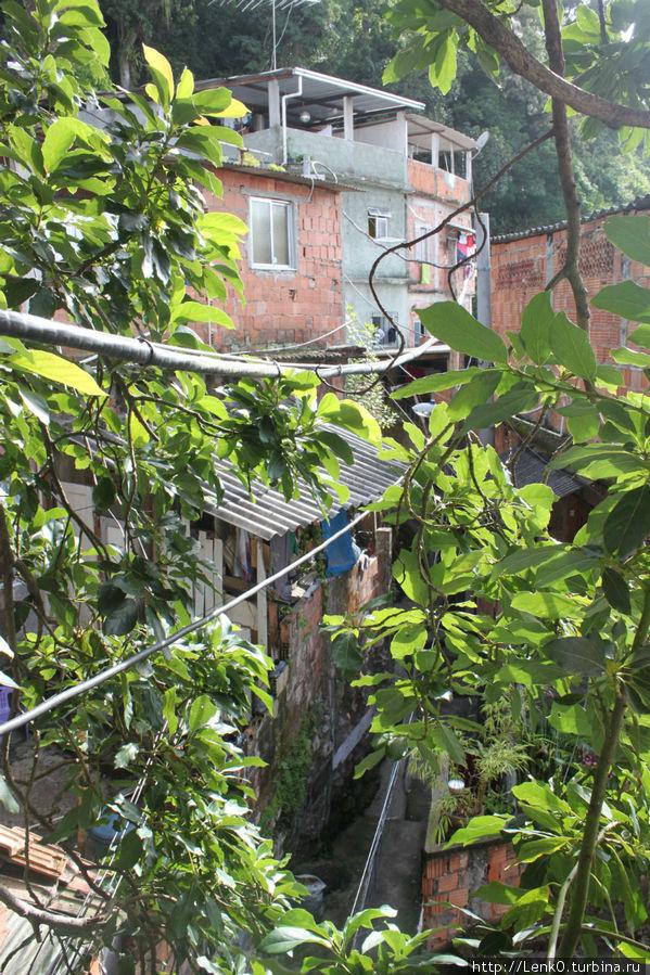 там внизу, за листьями виднеется УЛИЦА, на котороц стоит хостел