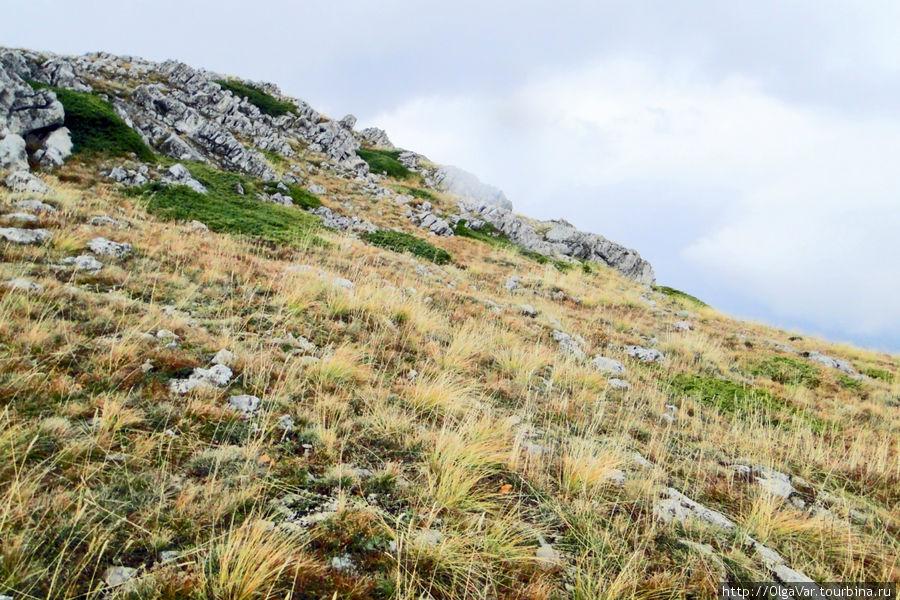 Это Гора Анагр-Бурун уже с другой стороны