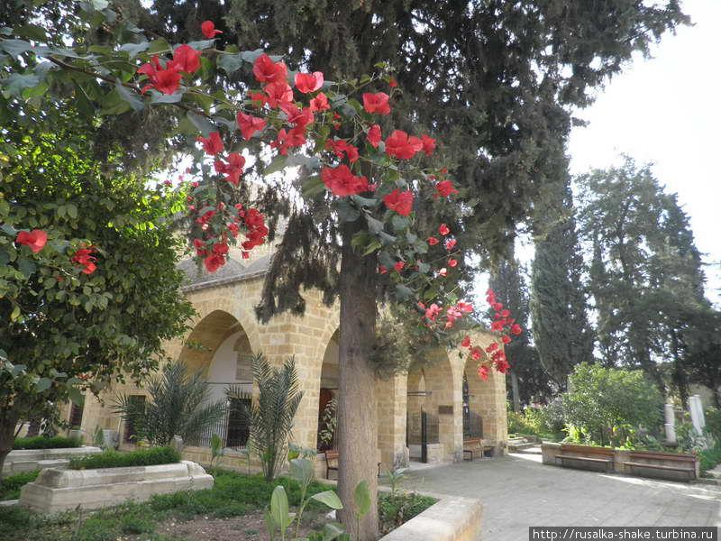 Мечеть Арабахмет Никосия (турецкий сектор), Турецкая Республика Северного Кипра