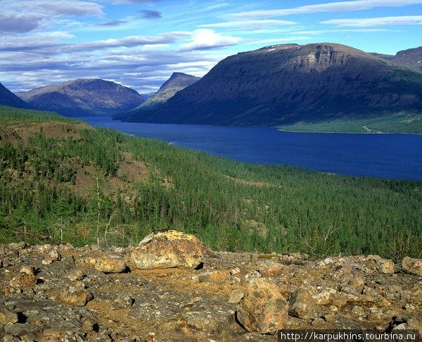 Озеро Кутарамакан. Пожалуй, оно самое красивое из всех озёр в западной части плато. Оно очень узкое и простирается в глубокой и узкой долине с юго-запада на северо-восток. Окружающие горы круто обрываются к его берегам. А на их плоских вершинах можно даже встретить снежного барана. Ведь именно с целью защиты этого редкого животного и был организован Путоранский заповедник. Северо-восточная часть озера как раз уже относится к территории заповедника. Если озёра Мелкое, Глубокое, Лама, Накомякен и Кета относятся к бассейну Пясины, то Кутарамакан уже принадлежит бассейну Енисея.