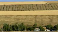 Сюрреалистические картины  Жуалинской долины созданы необыкновенной изрезанностью ландшафтов оврагами многочисленных речек, бегущих со склонов Каратау и Боролдая.