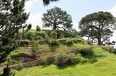 32. После дождей трава нах одной из норок съехала и видно, что подо всем Хоббитоном проложена система орошения. Трава здесь намного зеленее округи. В Хоббитоне постоянно следят за порядком 5 садоводов.