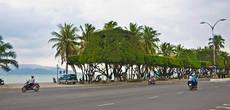 Искусство декоративного обрезания деревьев (или как это правильно называется?) в Нячанге доведено до абсолюта.
