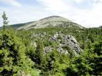 А ведь когда-то, миллионы лет назад, гора, наверняка, была скалистой, а со временем все эти скалы осыпались как иголки с новогодней елки