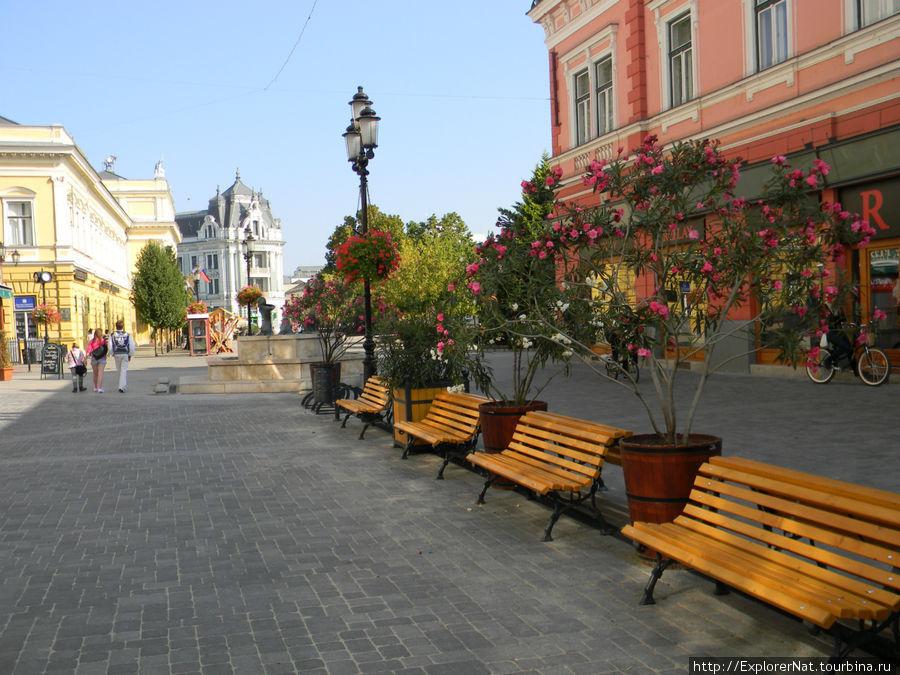 центральная улица Ниредьхаза