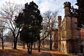 Вокруг дворца растут хаотично рассаженные деревья.