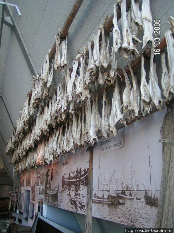 Стенд, посвящённый норвежскому рыболовству