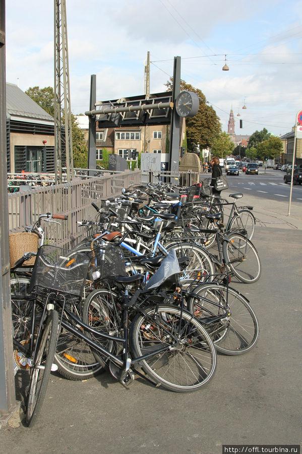 Велосипеды около вокзала. Датчане экономят на транспорте, но не экономят на здоровье и сохраняют экологию.