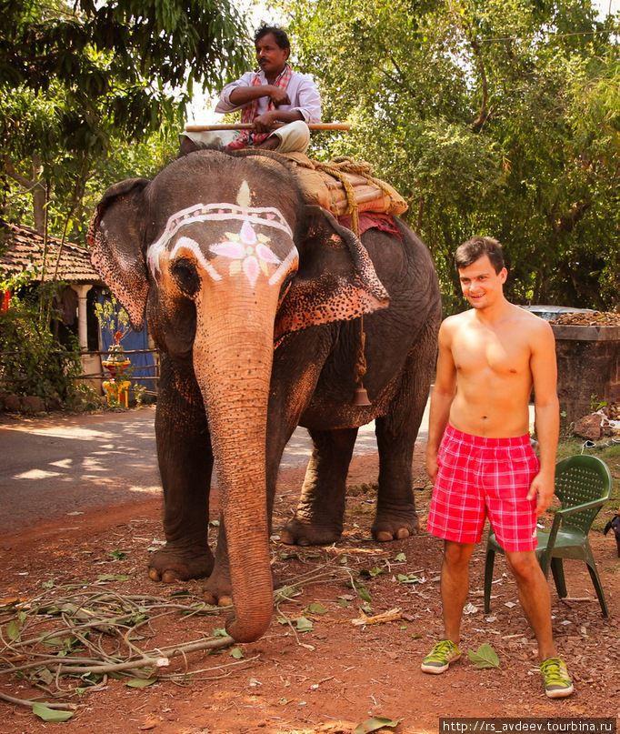 Тот самый слоник, который жил в храме!