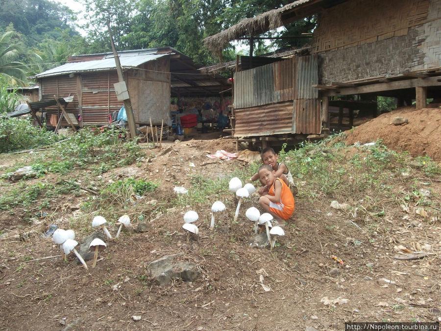 голодные детишки ждут когда грибы созреют