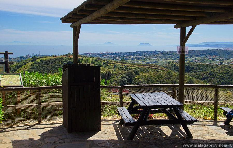 Кафешка с видом на Африку