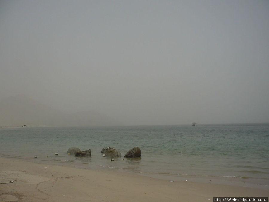 Круиз по Оманскому заливу Регион Мусандам, Оман
