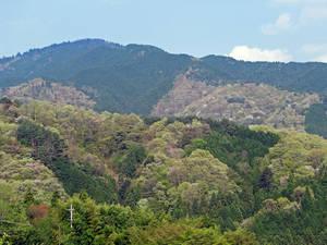 Виды на окрестные горы