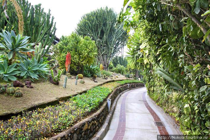 Лоро-парк. Радость для взрослых и детей Пуэрто-де-ла-Крус, остров Тенерифе, Испания