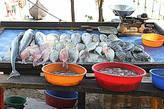 Рыбный базар, свежий улов