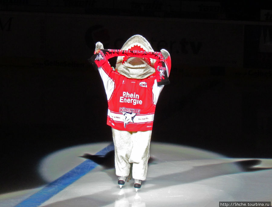 Потом выехал символ команды хозяев — акула, поприветствовал болельщиков...