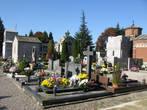 кладбище. вип-гробницы
