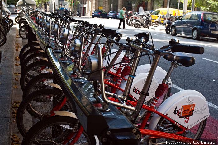 прокатные велосипеды