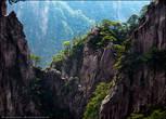 Удивительная способность сосен расти на твердом граните в горах Хуаншань связана с особым устройством их корневой системы. Корни этиих сосен выделяют органическую кислоту и выдыхают углерод, который при соединении с водой превращается в углекислоту. Обе эти кислоты медленно и трудно растворяют гранит, позволяя корням извлекать по капле воду и питательные вещества. Чем глубже корни — тем прочнее дерево, и потому корни, как правило, в несколько раз длиннее ствола. А вот иголки у здешних сосен короткие и жесткие: мизерная поверхность испарения позволяет экономить влагу.
