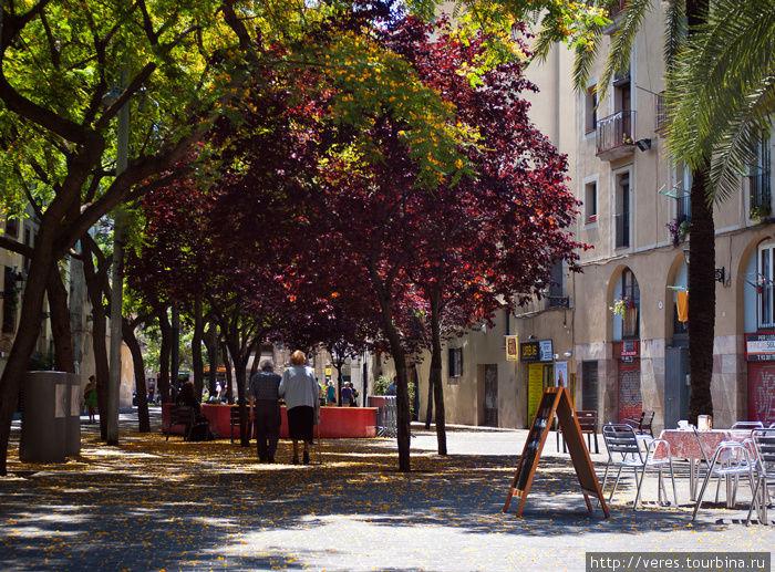 дворики Барселоны