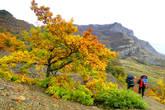 Осенью в горах очень красиво. Деревья еще не сбросили свой наряд и шелестят разноцветной листвой
