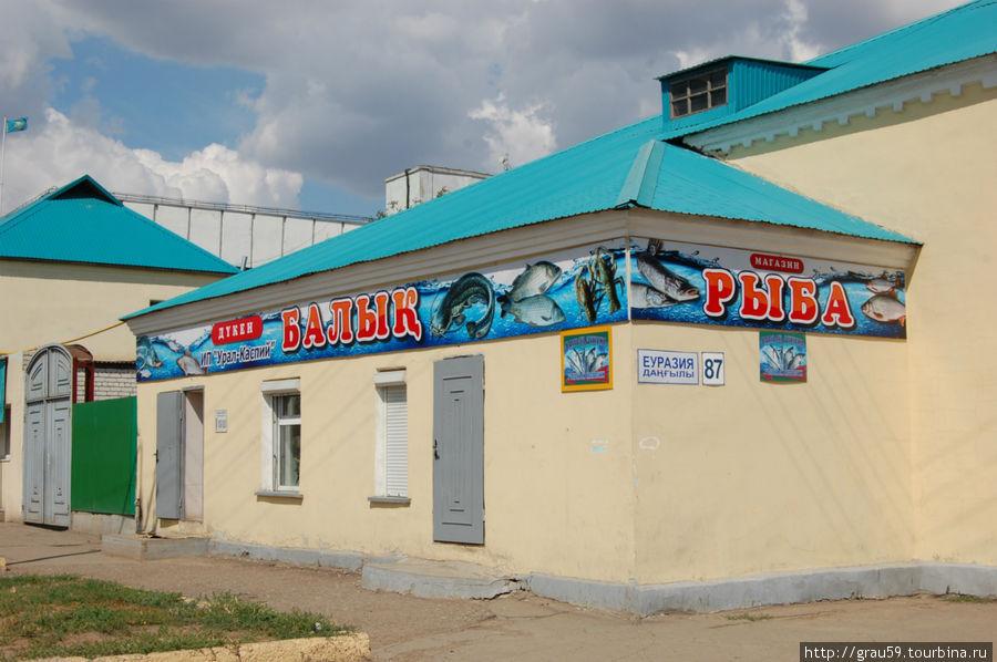 Вид со стороны улицы Айтиева
