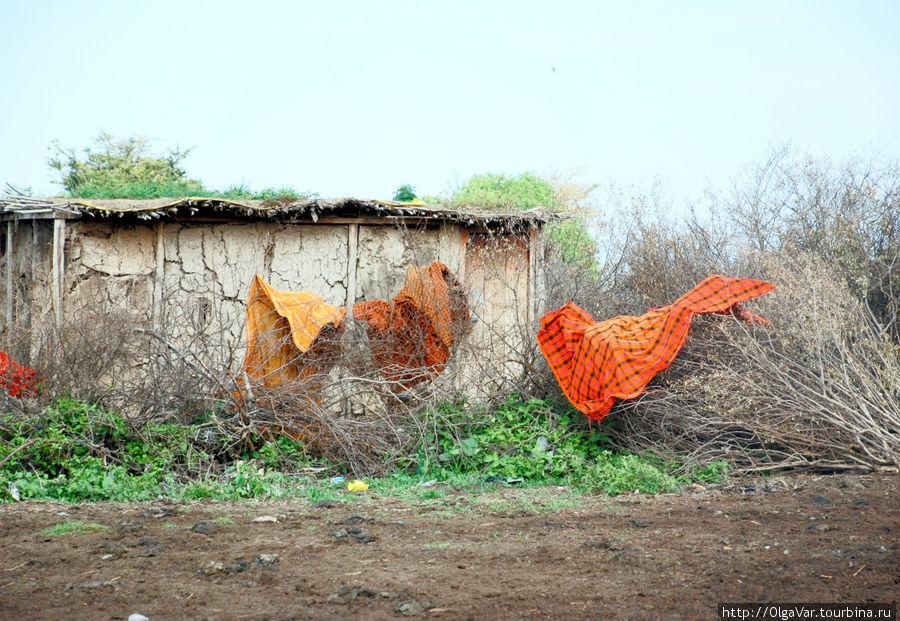 Масайская хижина