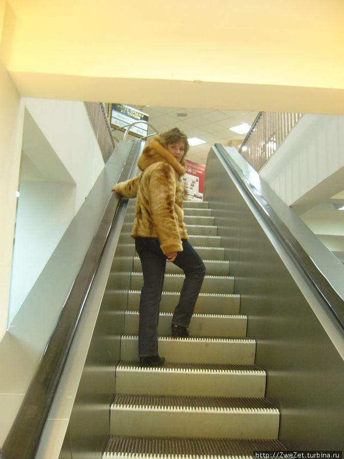 лестница-чудесница бежит сама собой