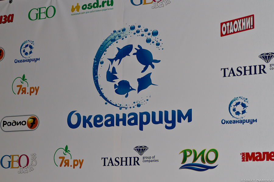 Океанариум в ТРЦ «РИО» позиционируется как самый большой в Москве. Данное утверждение несколько спорно, но я не был в других, поэтому верю создателям на слово:
