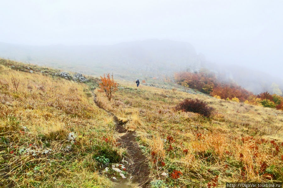Туман окутал гору и скрыл