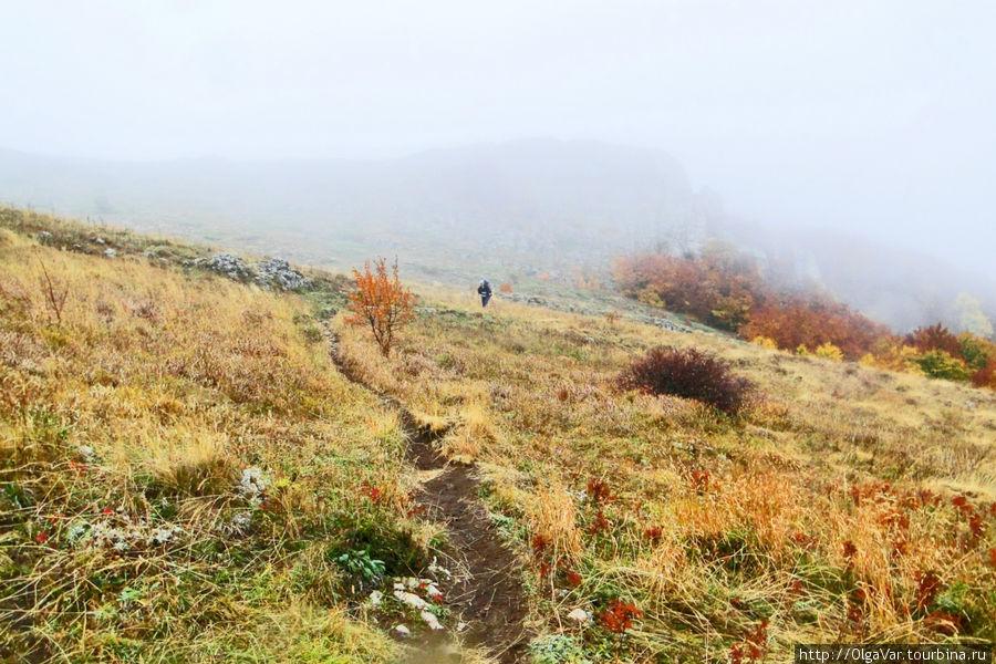 Туман окутал гору и скрыл её из виду